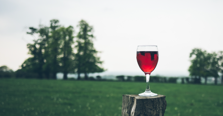 Ingerir-alcohol-en-grandes-cantidades-y-crónicamente